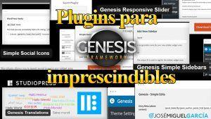 Plugins para Genesis Framework imprescindibles. Los que uso habitualmente